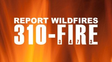 310 FIRE wildfire