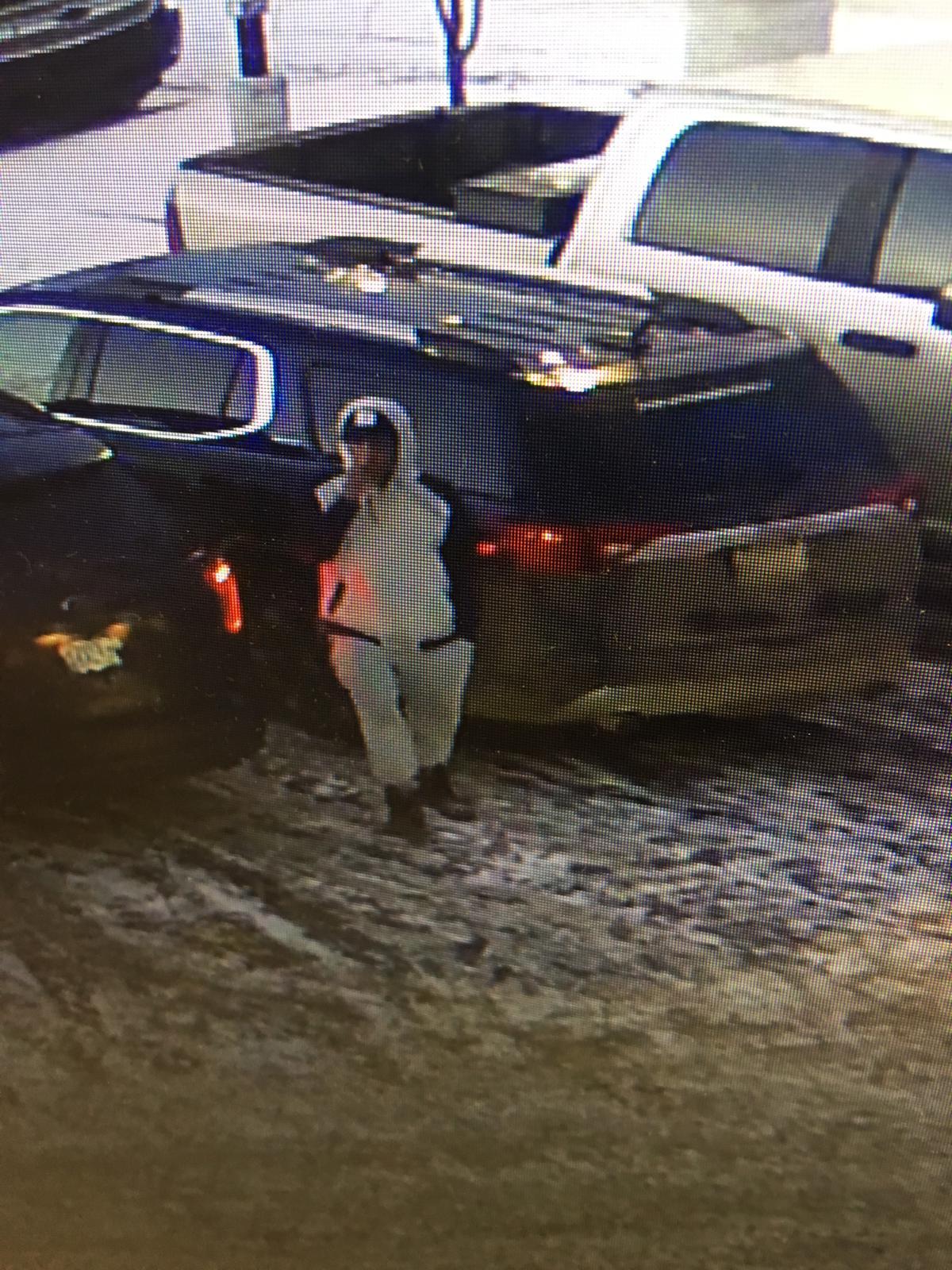 carjacking suspect in custody - my grande prairie now